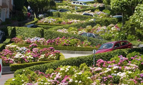 Lombard Street San Francisco - Risskov Rejser