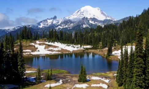 Mt Rainier National Park - Risskov Rejser