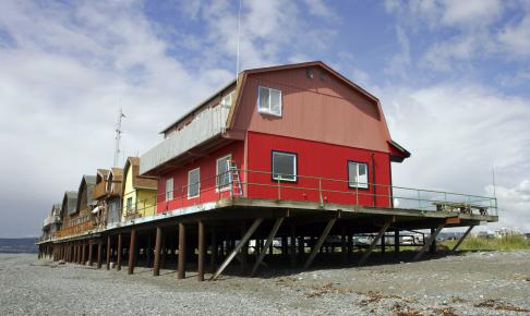 Homer, Alaska - USA - Risskov Rejser