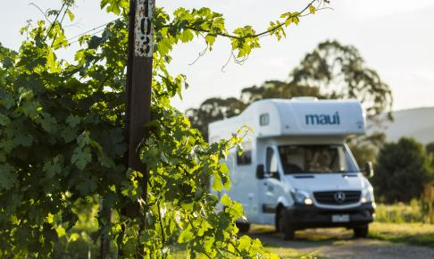 Winery Havens campingplads - Risskov Rejser
