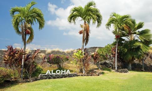 Aloha skilt på Hawaii - Risskov Rejser