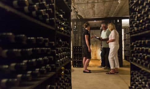 Winery Havens - Risskov Rejser