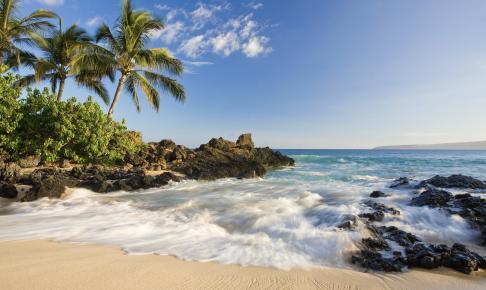 Beach Tropical Maui Hawaii - Risskov Rejser