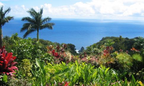 Maui kystlinje - Risskov Rejser