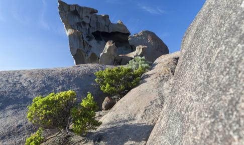 Remarkable Rock på Kangaroo Island - Risskov Rejser