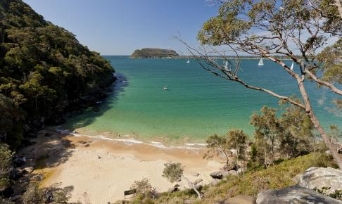 Ku-ring-gai Chase National Park i Australien