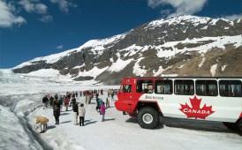 Athabasca Glacier Ice Explorer - Risskov Rejser