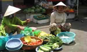 Siddende vietnamesere med grøntsager - Risskov Rejser