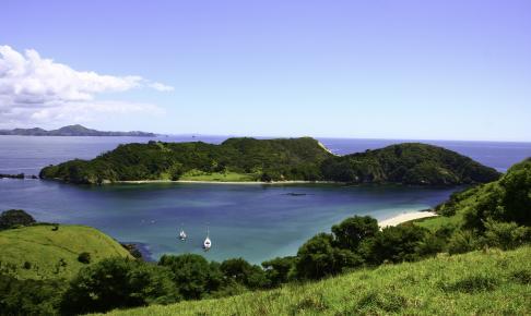 Frodige Bay of Islands - Risskov Rejser