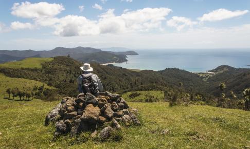Coromandel-halvøen indbyder til vandreture i det bjergtagende landskab - Risskov Rejser