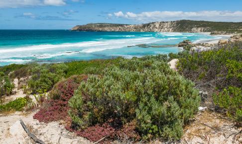 Pennington Bay på Kangaroo Island