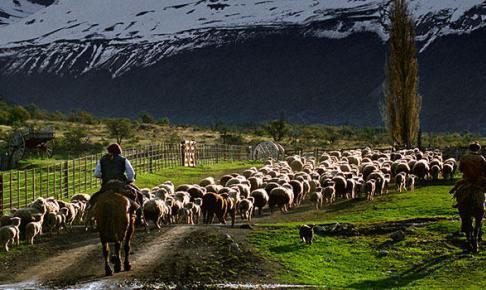 Ranch i Argentina - Risskov Rejser