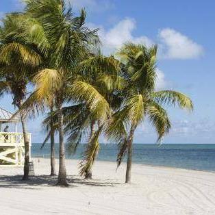Beautiful Miami Beach - Risskov Rejser