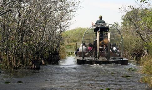 Airboat i Everglades - Risskov Rejser