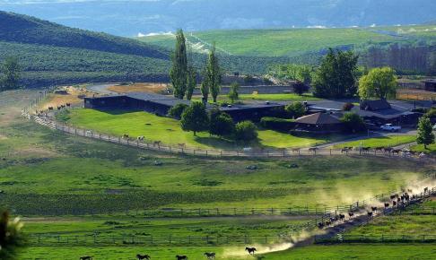 Sundance Guest Ranch - Risskov Rejser