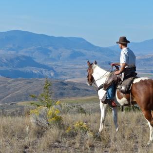Cowboy country life - Risskov Rejser