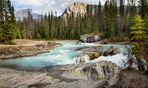 Natural Brigde i Yoho nationalpark - Canada - Risskov Rejser