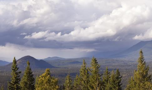 Wells Gray Provincial Park - Risskov Rejser