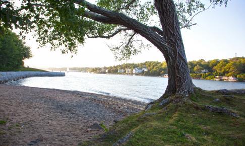 Smuk kyst i Nova Scotia - Risskov Rejser