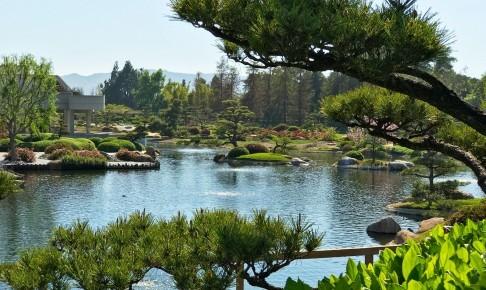 Den Japanske Have - Risskov Rejser