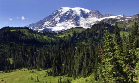 Mount Rainier - Risskov Rejser