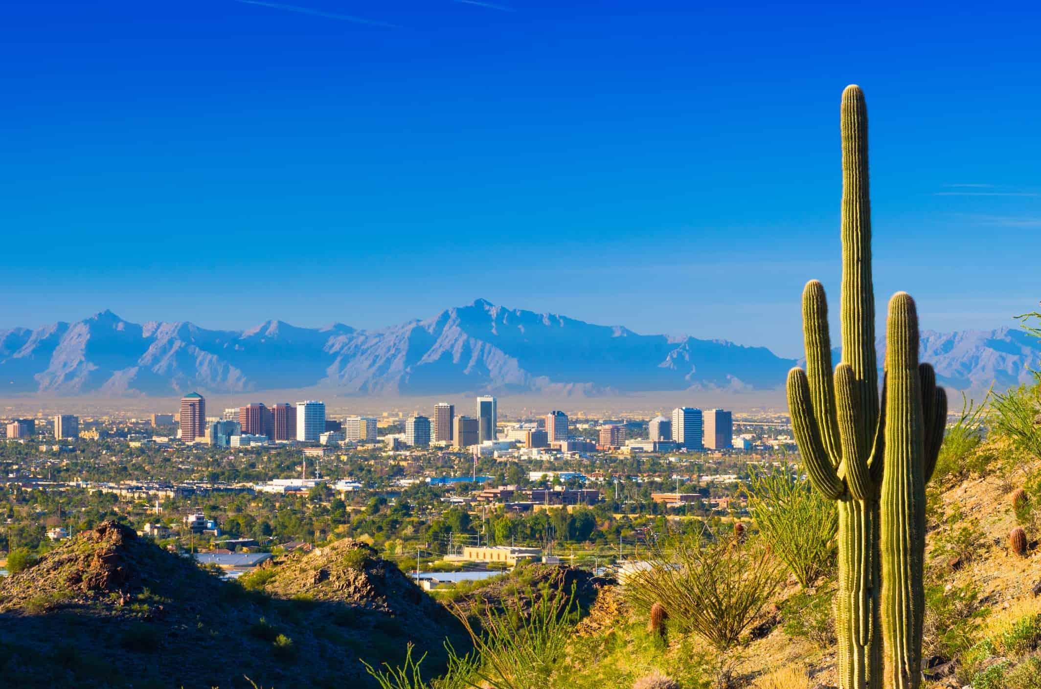 Phoenix skyline and cactus - Risskov Rejser