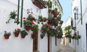 Cordoba, Spanien - Risskov Rejser