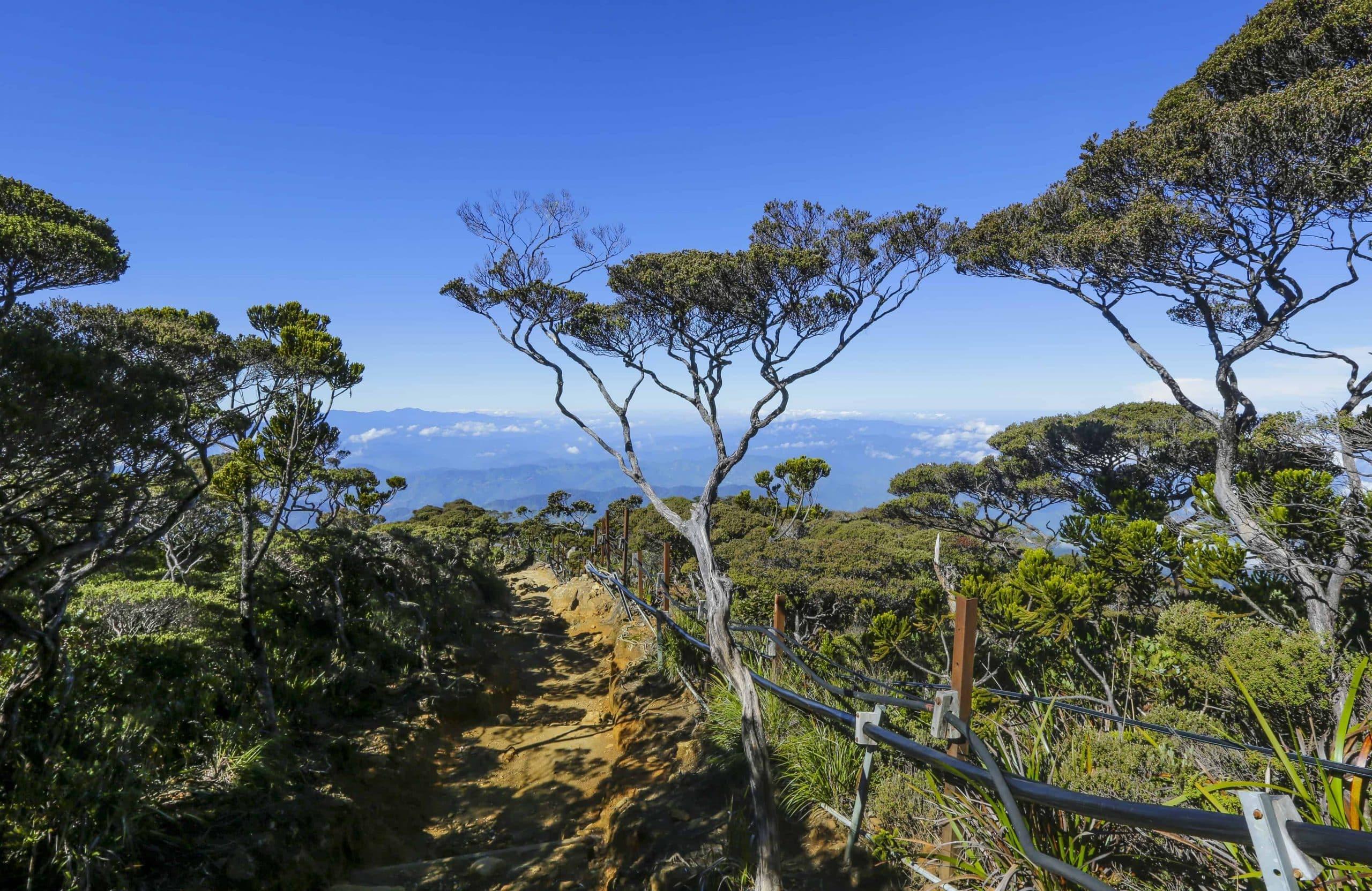 Udsigt over Kinabalu Nationalpark - Risskov REjser