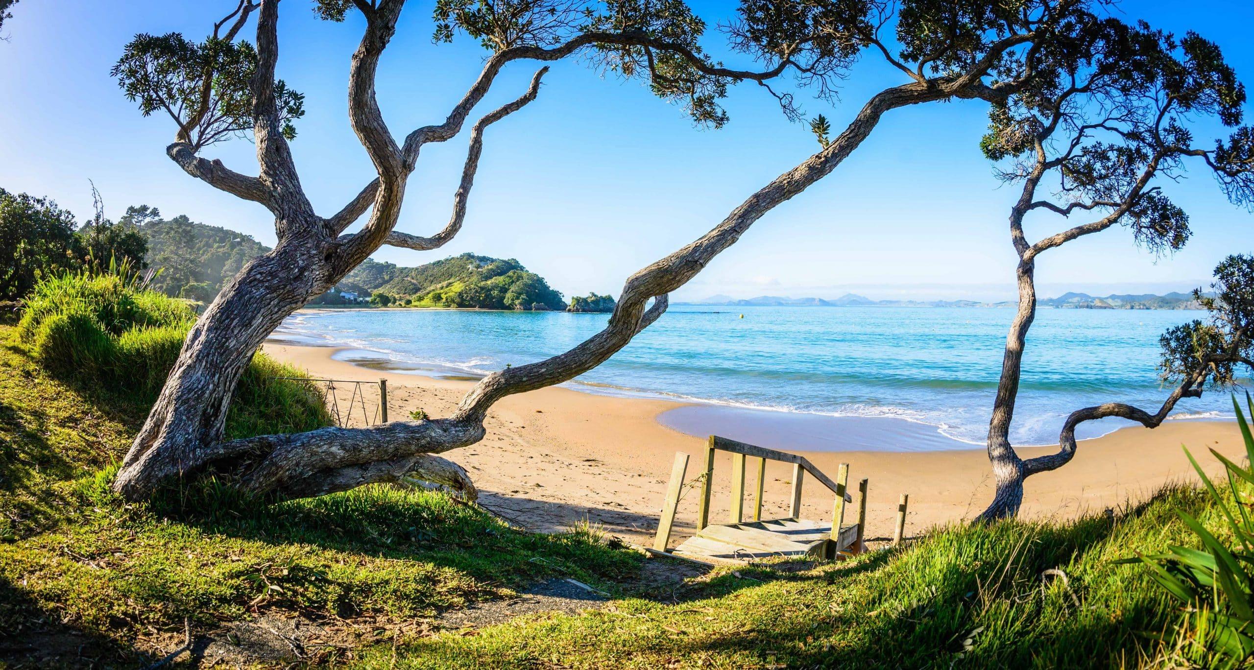 Rejseforslag – New Zealand – Hvor havene mødes - Risskov Rejser