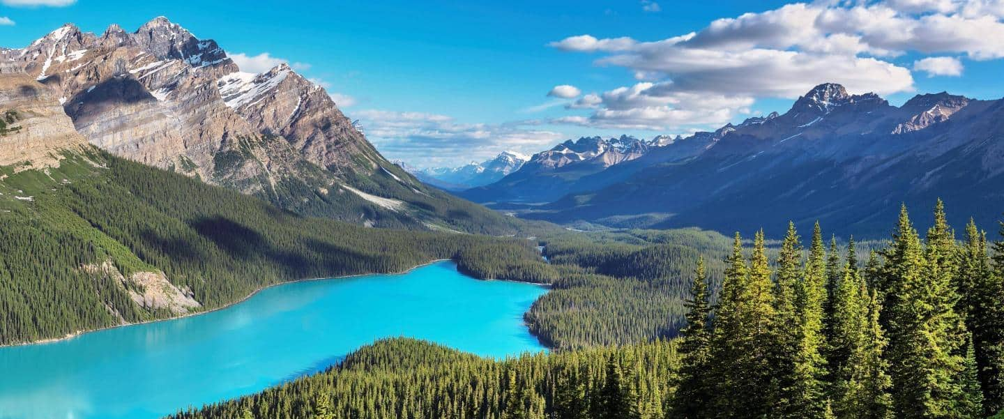 Panorama of Peyto Lake in Banff National Park - Risskov Rejser
