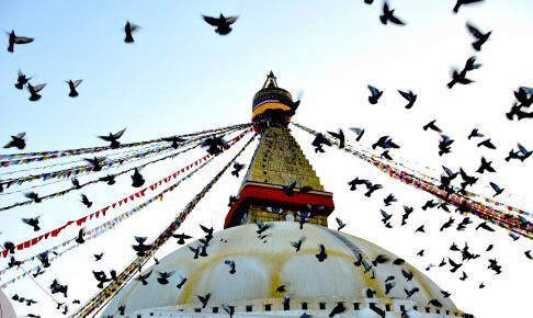 Boudhanath Stupa - Risskov Rejser