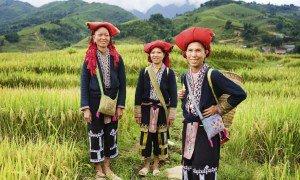 Vietnam minoritet - Risskov Rejser