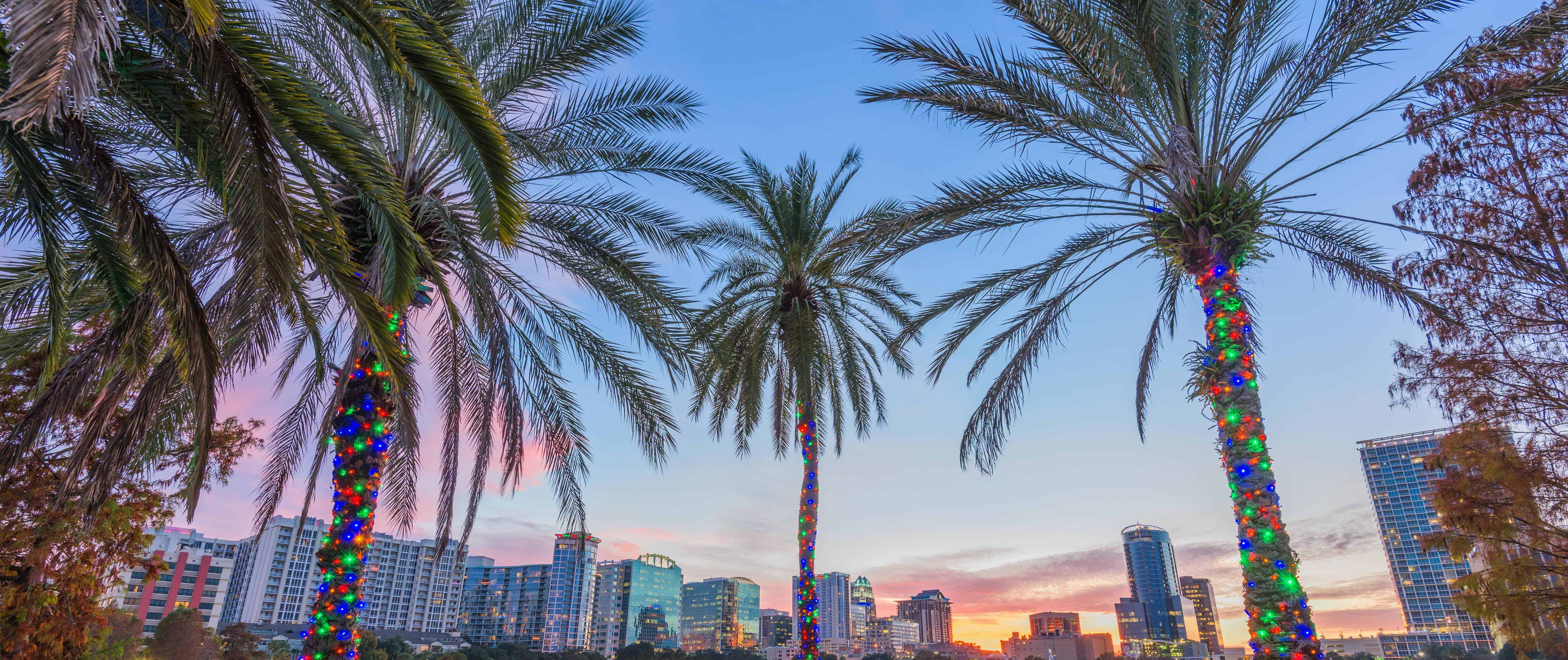 d5c0cce4 Storbypuls og Floridas forlystelser | USA | Risskov Rejser