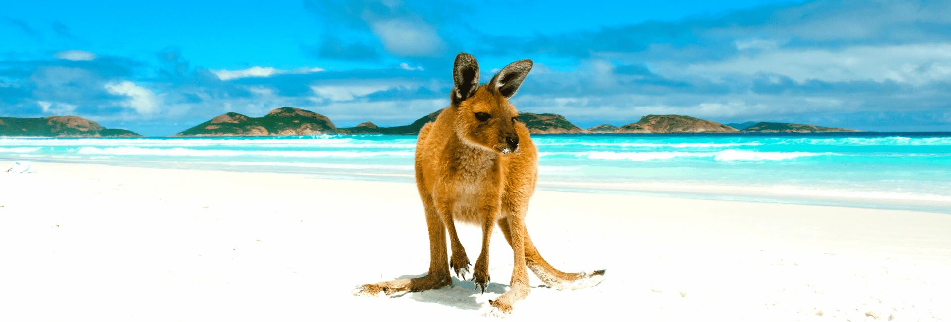 Danmarks bedste rundrejser til Australien med dansk rejseleder - Risskov Rejser