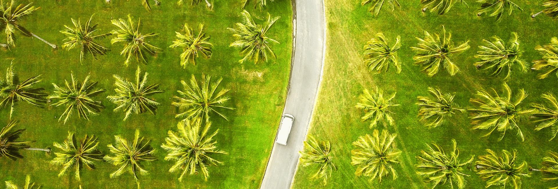 Danmarks bedste autocamper-ferie i Australien med Risskov Rejser