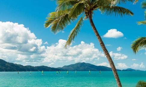 Hamilton Island, Australien – Risskov Rejser
