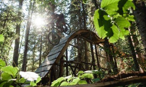 Mountain Bike er populært i skovene omkring byen Prince George