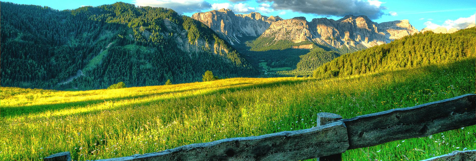 Der venter autentiske oplevelser på en ranch i USA - Risskov Rejser over 25 års erfaring