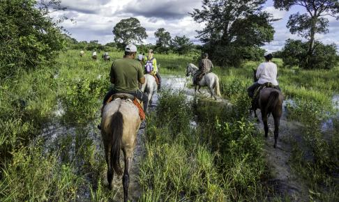 Pantanal - Risskov Rejser