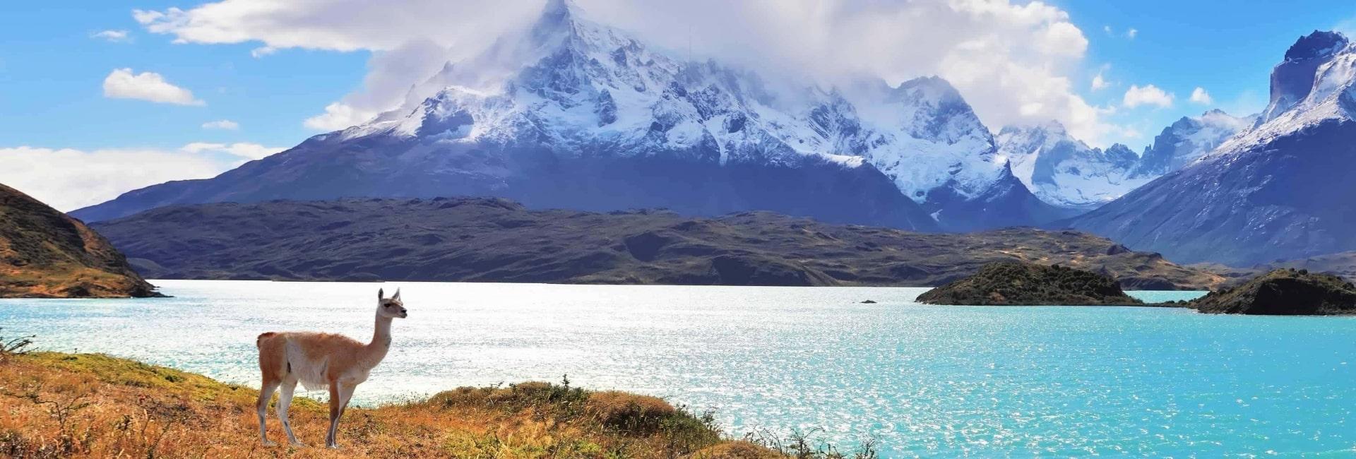 Der er billedskønt i regionen Patagonien - Risskov Rejser