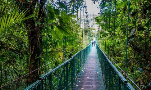 Hængebro i Arenal