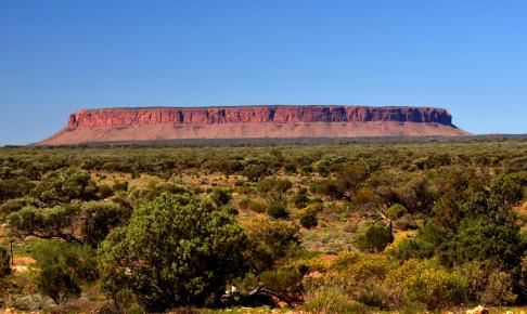 Mount Connor, Australien - Risskov Rejser