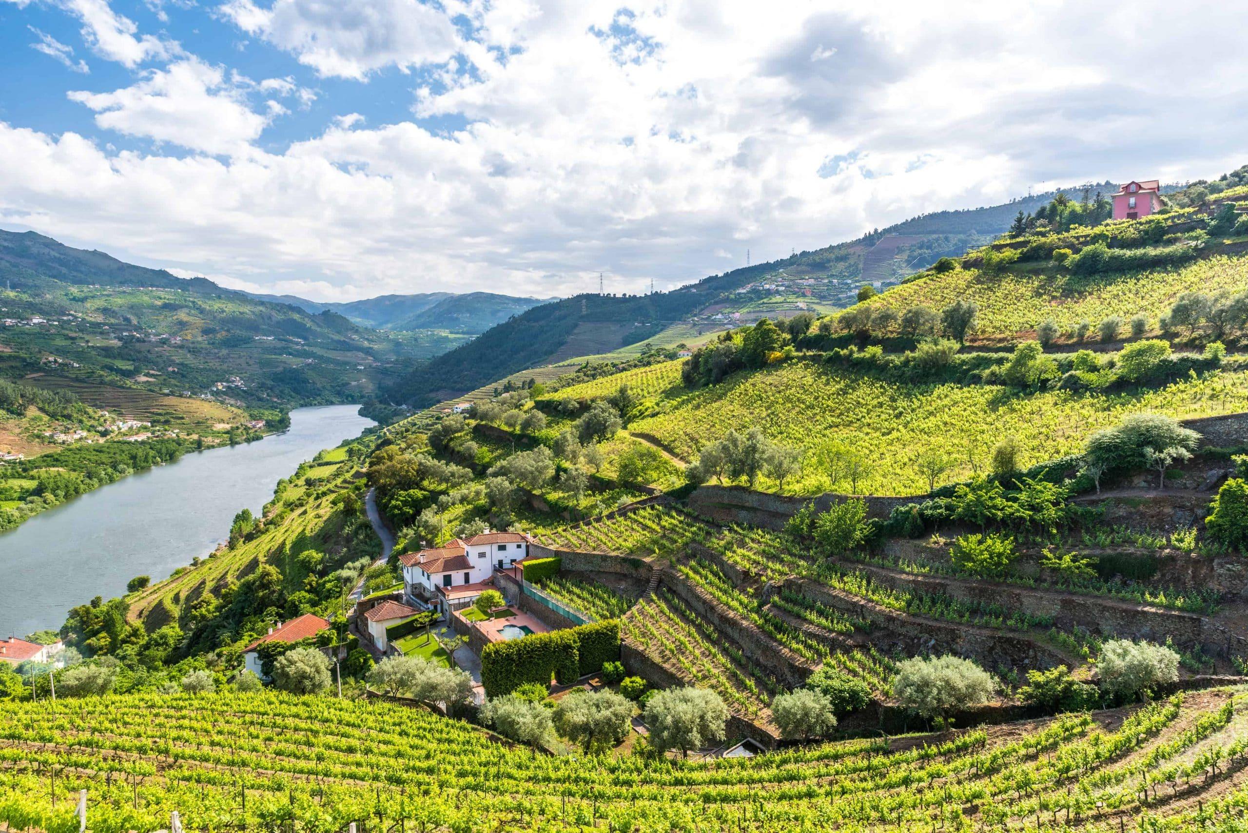 Douro-dalen, Portugal - Risskov Rejser