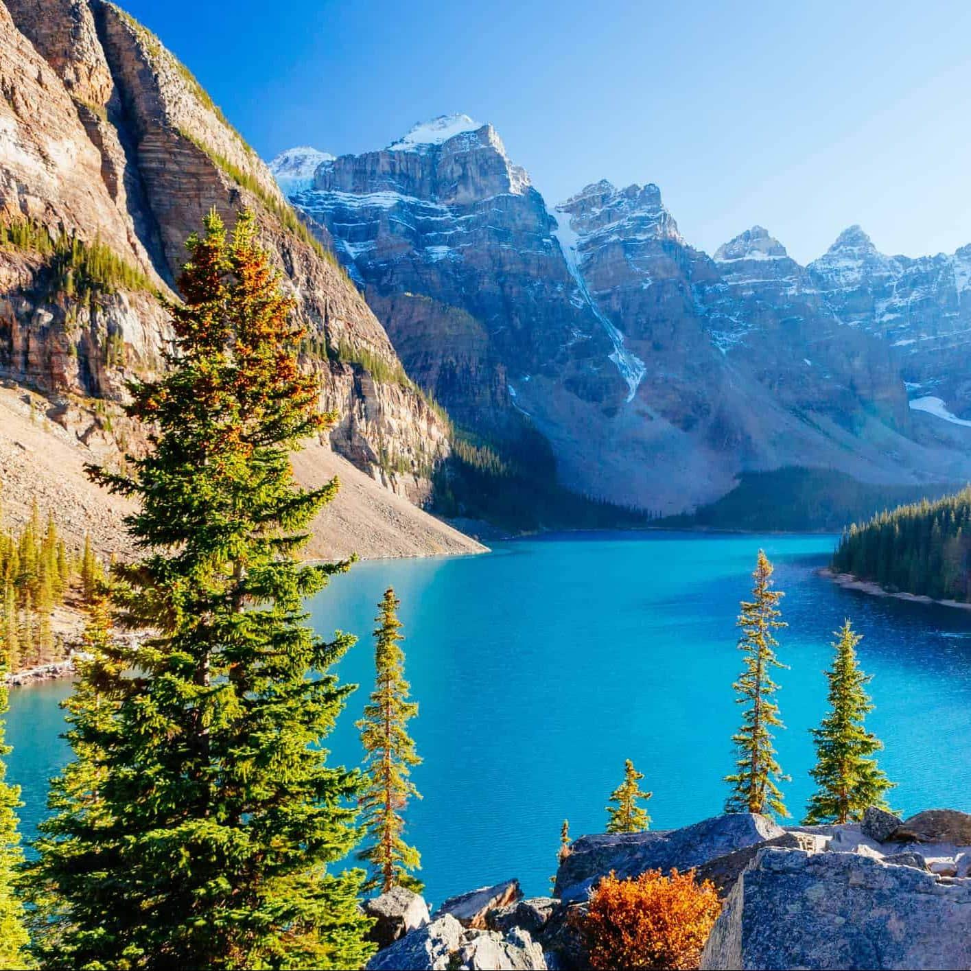 rejser til canada
