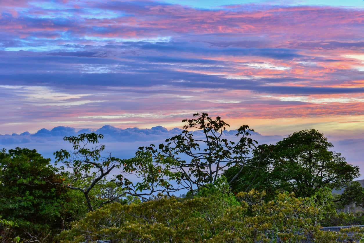 Solnedgang i Monteverde